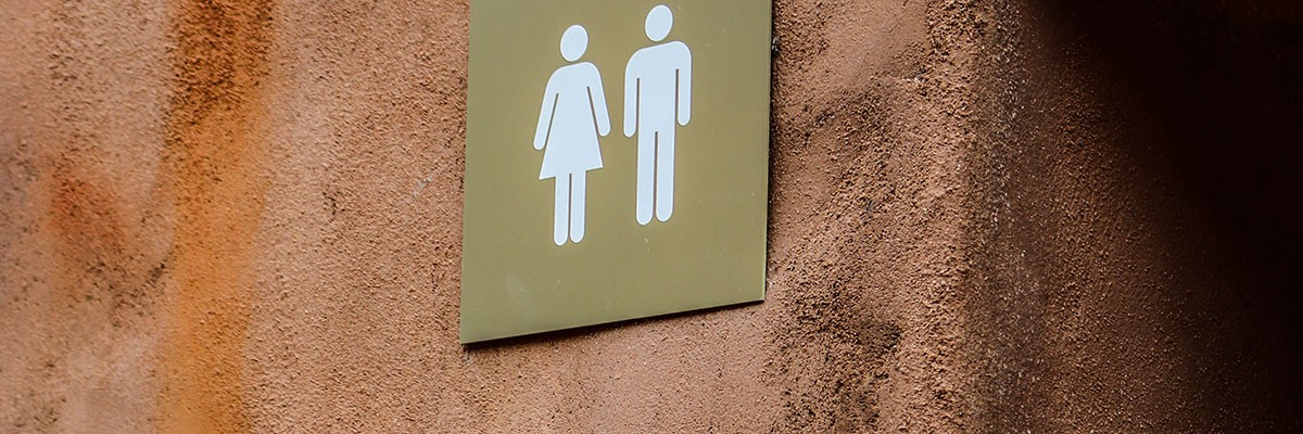 couple having sex in public family bathroom
